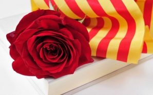 Signatures de Sant Jordi 2017